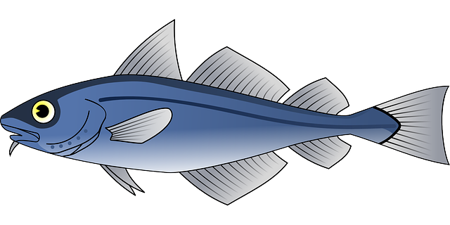 fish recipes instructions