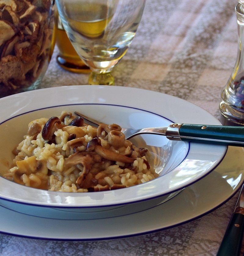 mushroom risotto italian recipe