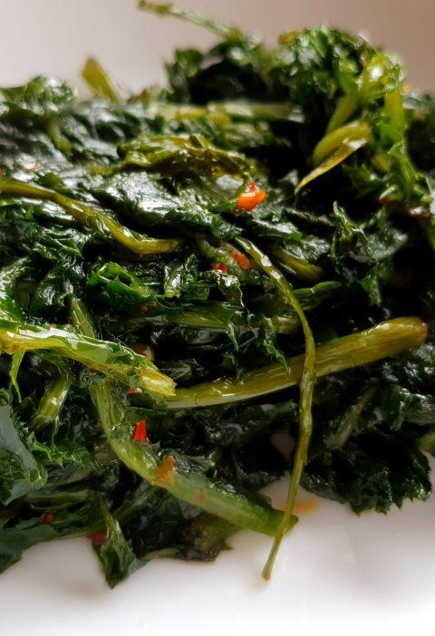 wild chicory greens recipe
